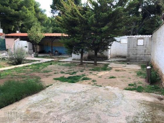 Οικοπεδο με κτίσματα στο Κολυμβητήριο Ραφηνας