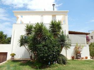 Detached House 250 m²