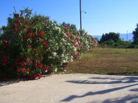 Southern Peloponnese Villa