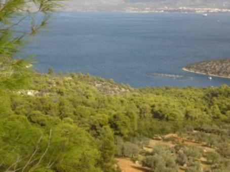 Sale, Parcel 5500 m², Katakali, Saronikos